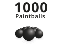 1000 Paintballs Bulk Pack