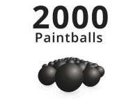 2000 Paintballs Bulk Pack