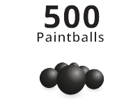 500 Paintballs Bulk Pack
